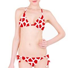 Animal Animalistic Pattern Bikini Set