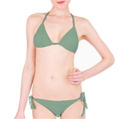 Mossy Green Bikini Set