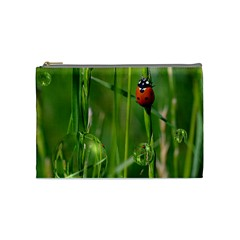 Ladybird Cosmetic Bag (medium)