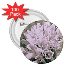 White Flower 2 25  Buttons (100 Pack)